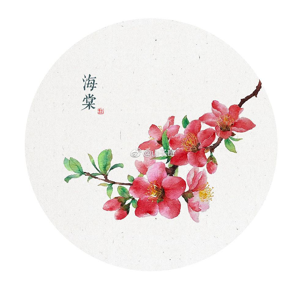 手绘 水彩植物 水彩花卉