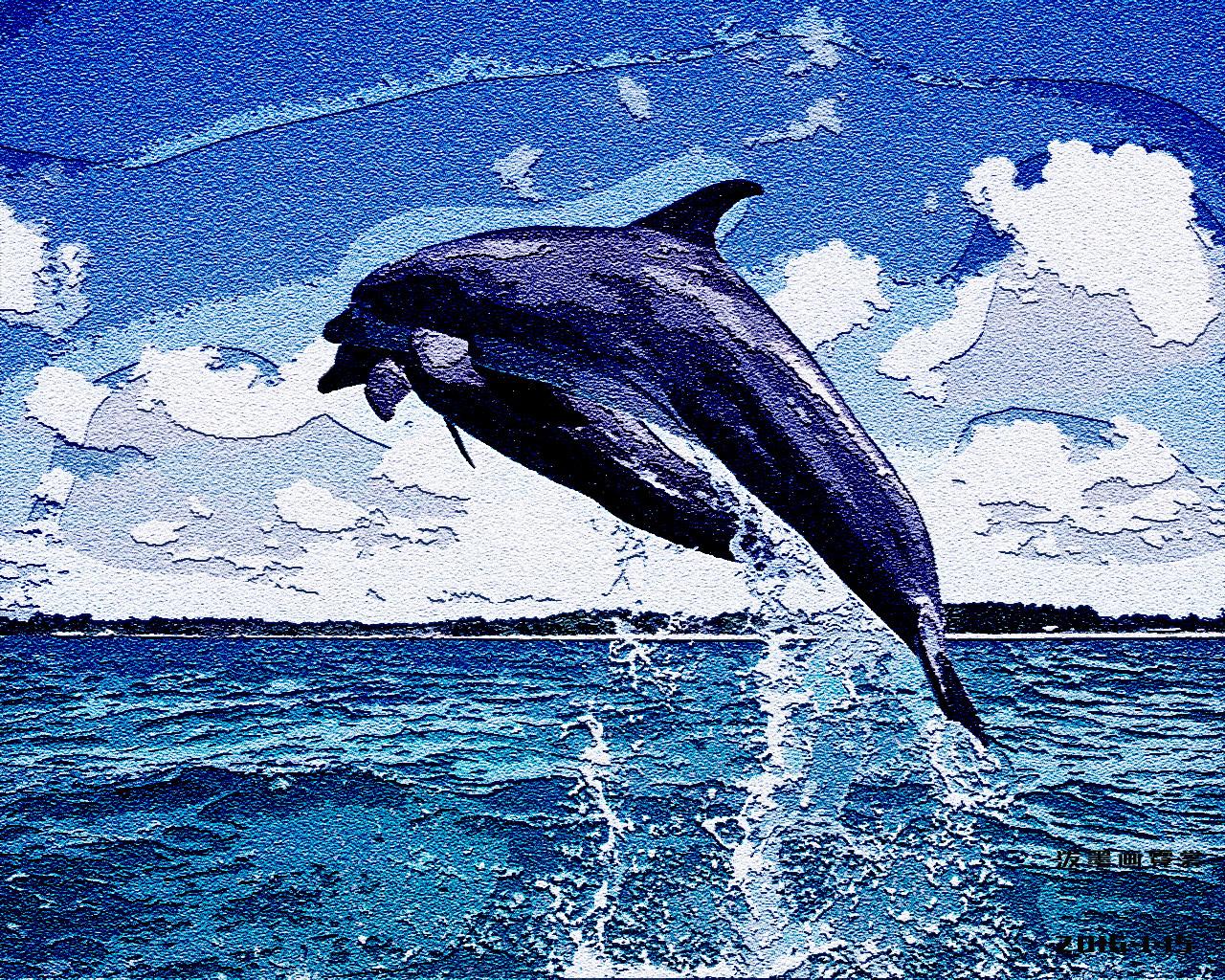 海豚体内结构图