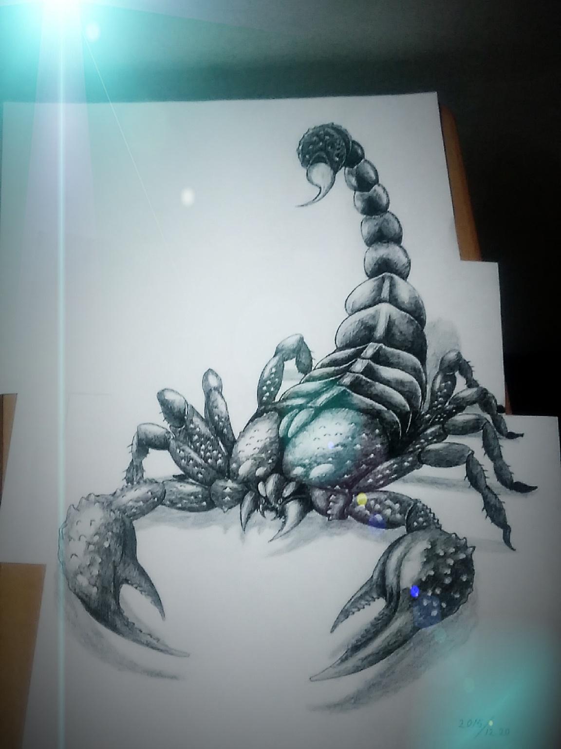 3d蝎子手绘设计