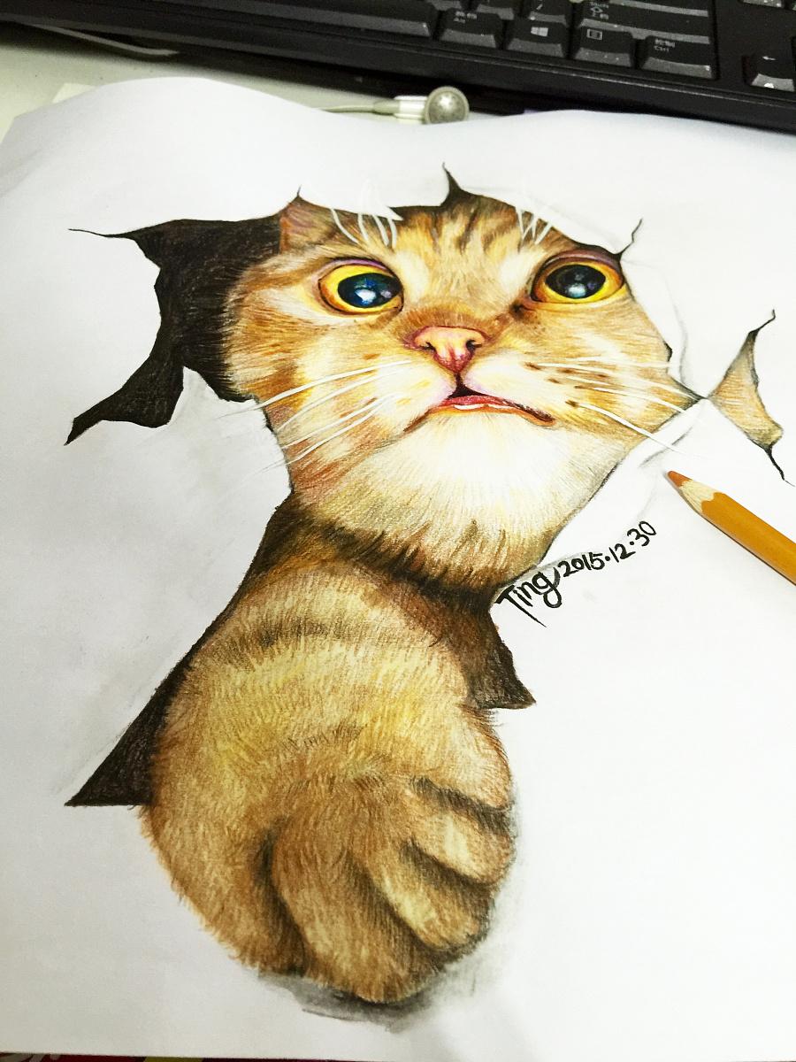 原创作品:彩铅猫咪