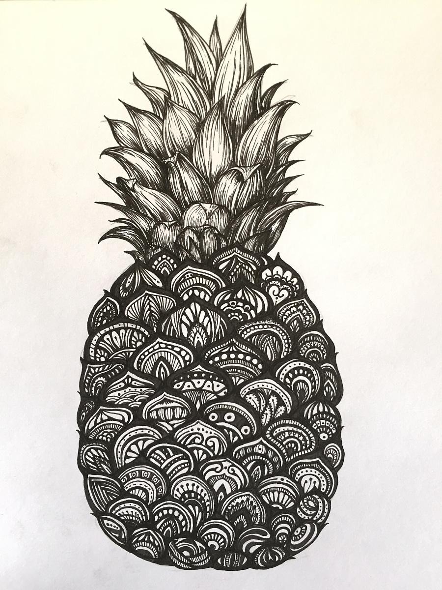 黑白插画——菠萝|绘画习作|插画|maolizhen