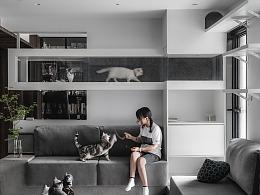 季意|私宅|猫狗星球