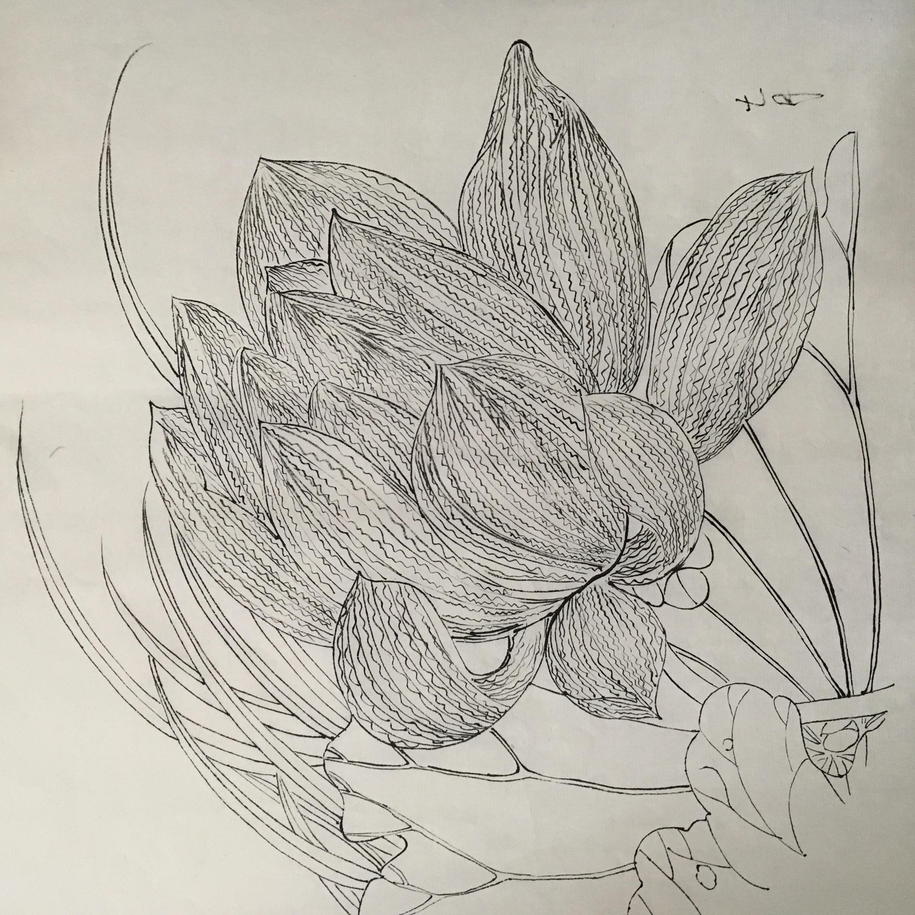 手绘工笔鸟画装修