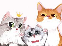 猫咪全家福