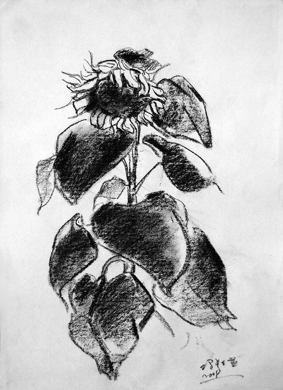 查看《09年《北方·青鸟集》作品选——零九年黑色的夏天》原图,原图尺寸:1431x1972