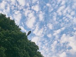 手机摄影 - 上海 - 天空与湖