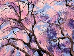 猫与婵插画记 | 樱花之旅