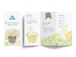 柳州市小动物协会插画,海报,折页