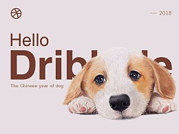 Dribbble设计整理-01(每日设计)