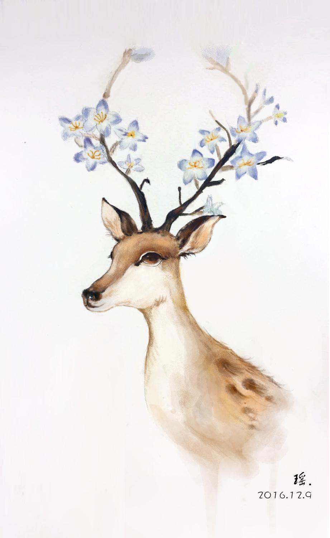 插画 麋鹿图片