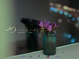 Flower-夜间睡莲