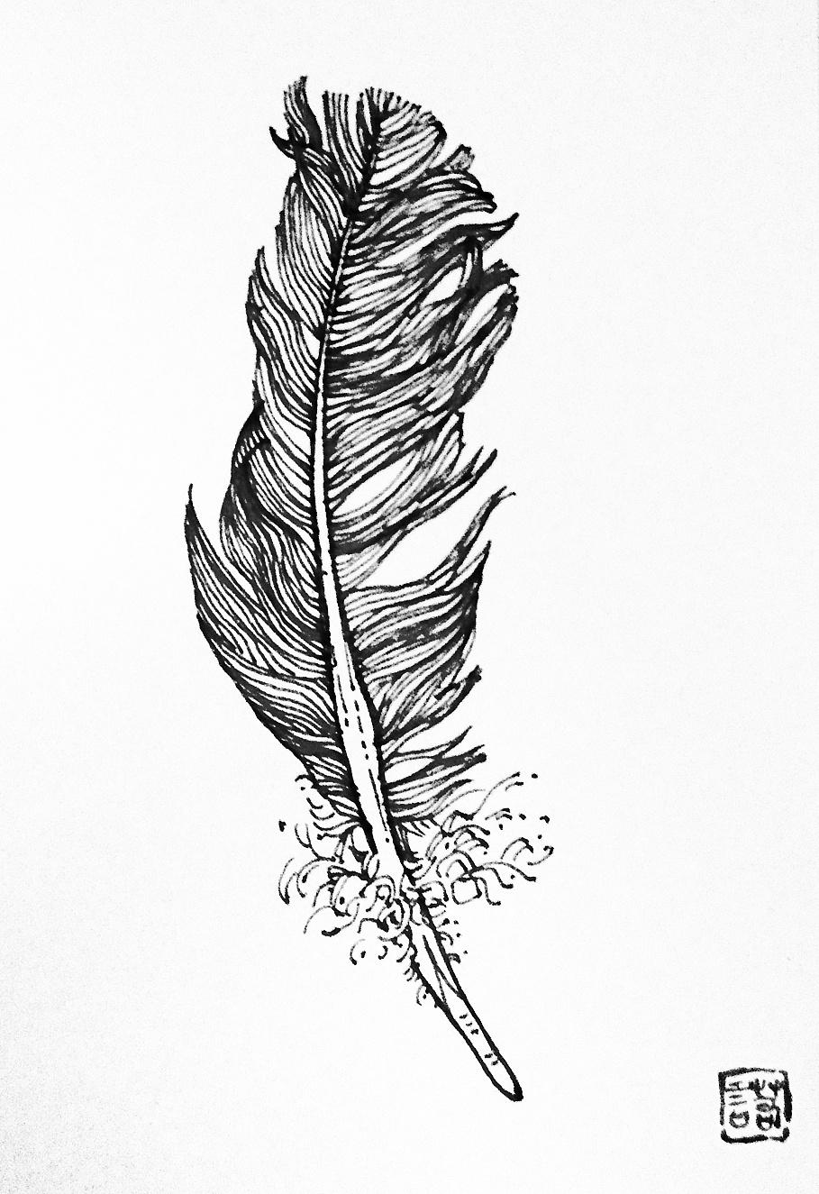 已寄送的手绘明信片|纯艺术|钢笔画|支葵 - 原创作品