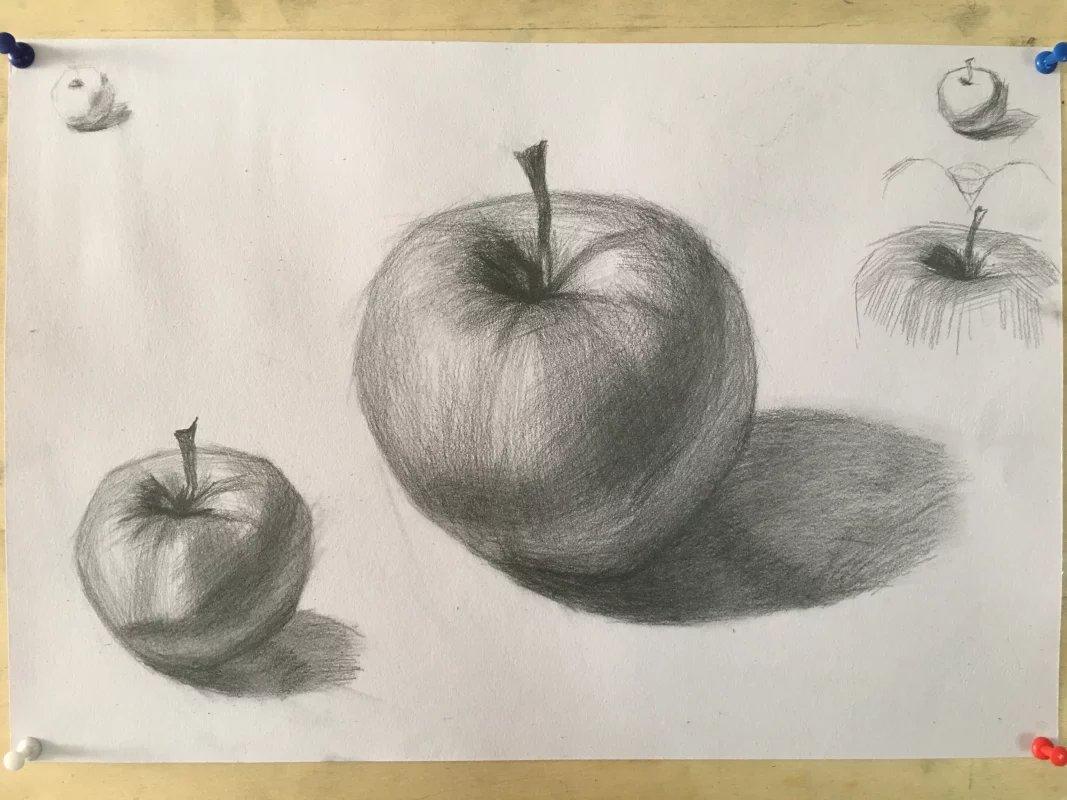 苹果素描图片步骤新手静物苹果的画法 高三网