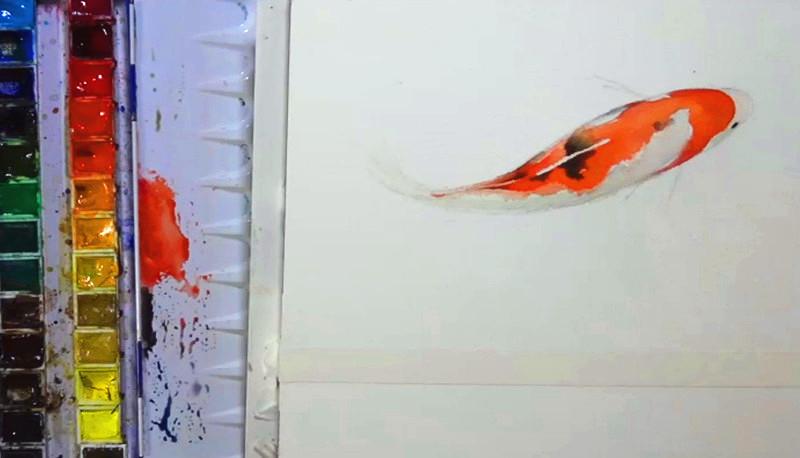 水彩动物教程(一)—水彩观赏鱼
