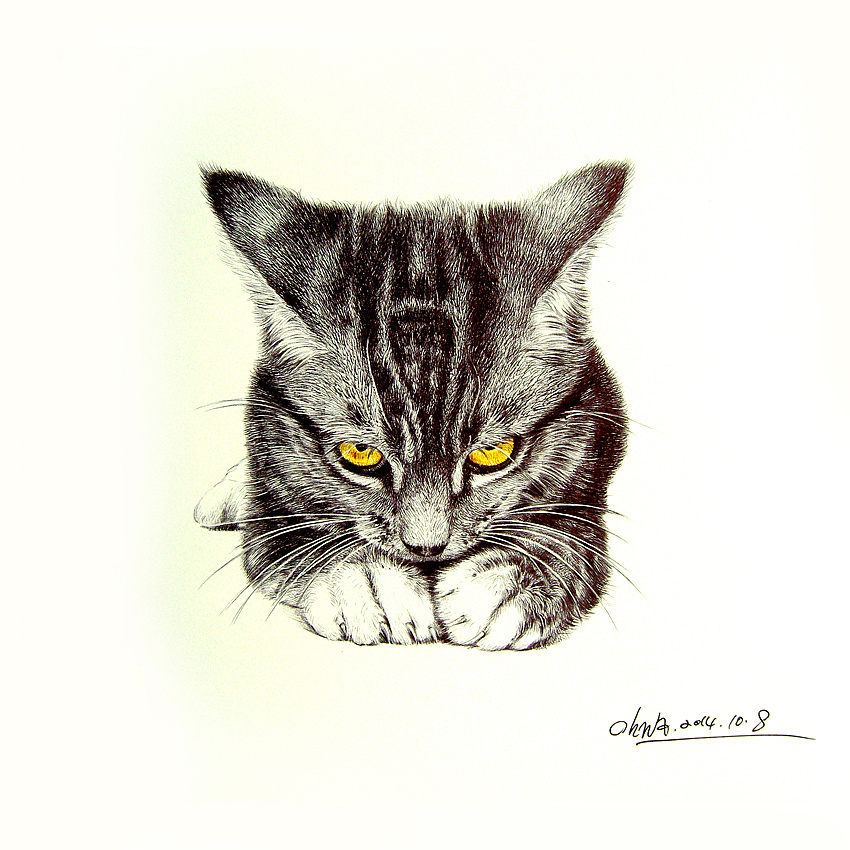 圆珠笔画-动物篇