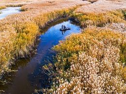 新疆塔城甘家湖自然保护区
