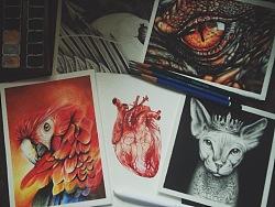 彩铅/素描习作