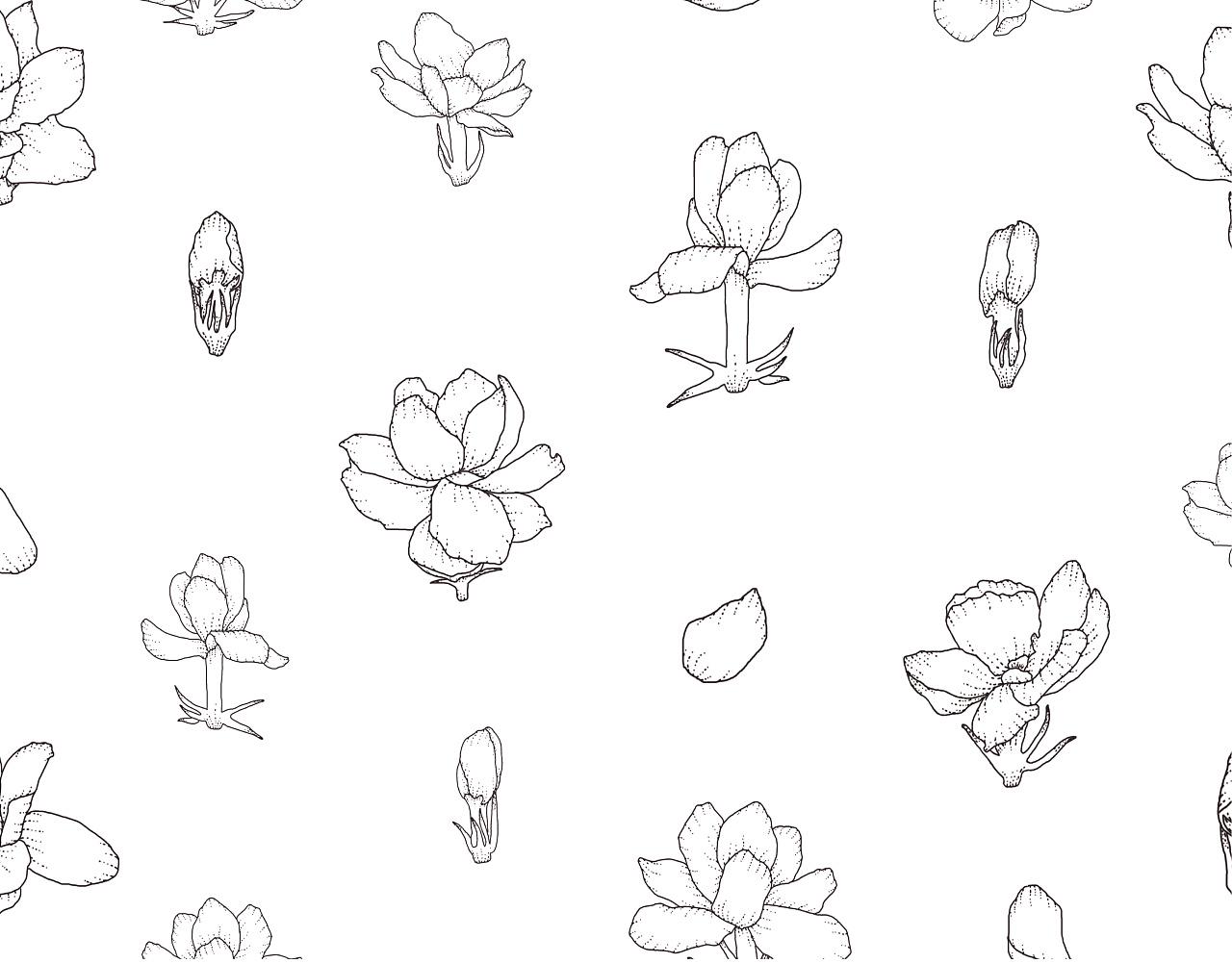 无茶茶叶品牌设计 茶叶包装设计 vi 茶叶插画