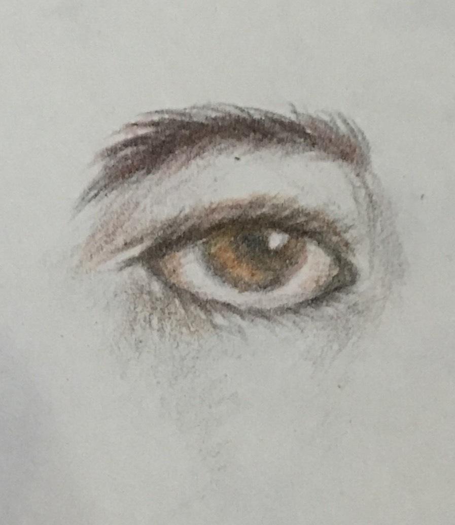 彩铅手绘 / 眼睛|纯艺术|彩铅|nww倪 - 原创作品