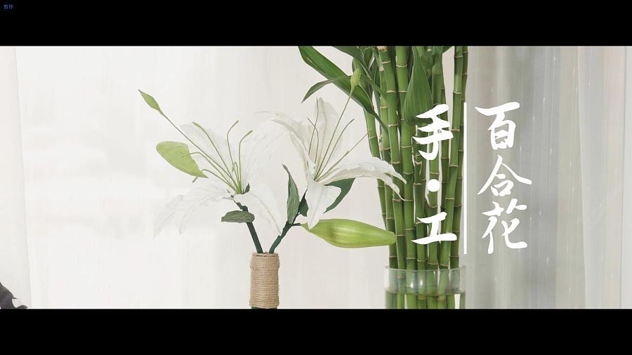 查看《清秀佳人百合花—手工DIY制作》原图,原图尺寸:1920x1080