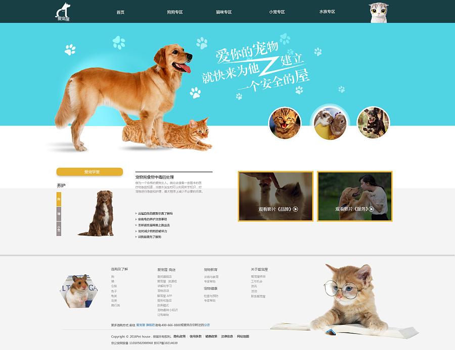 �有什么网站_宠物网站首页