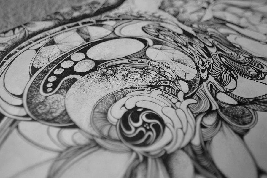 """查看《""""蜗居""""》原图,原图尺寸:4608x3072"""