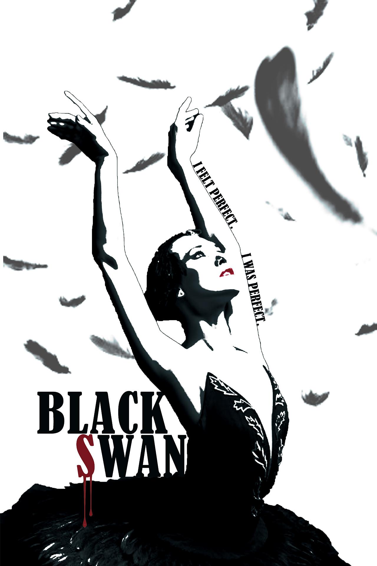 电影《黑天鹅》艺术海报.