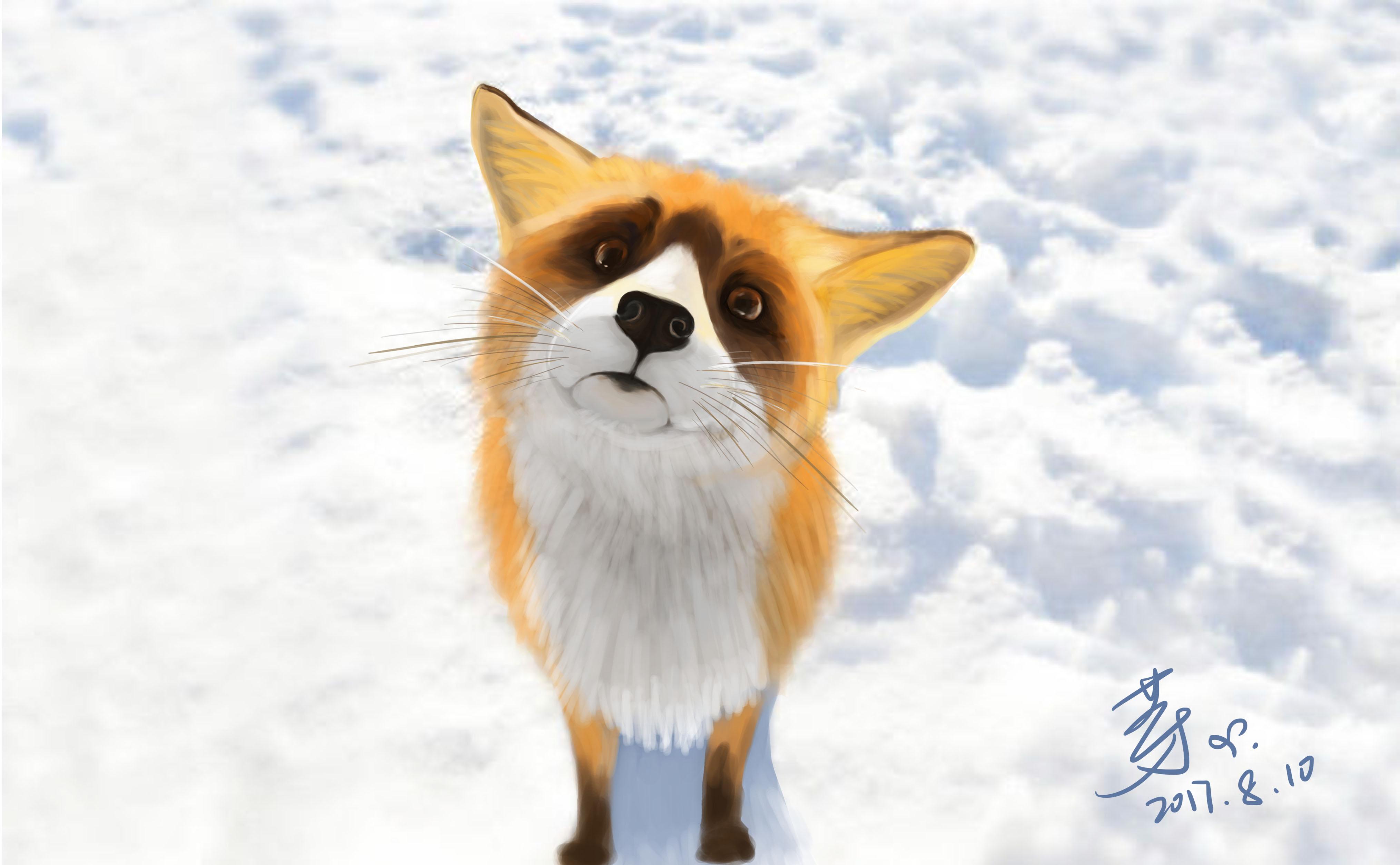 日常手绘:狐狸