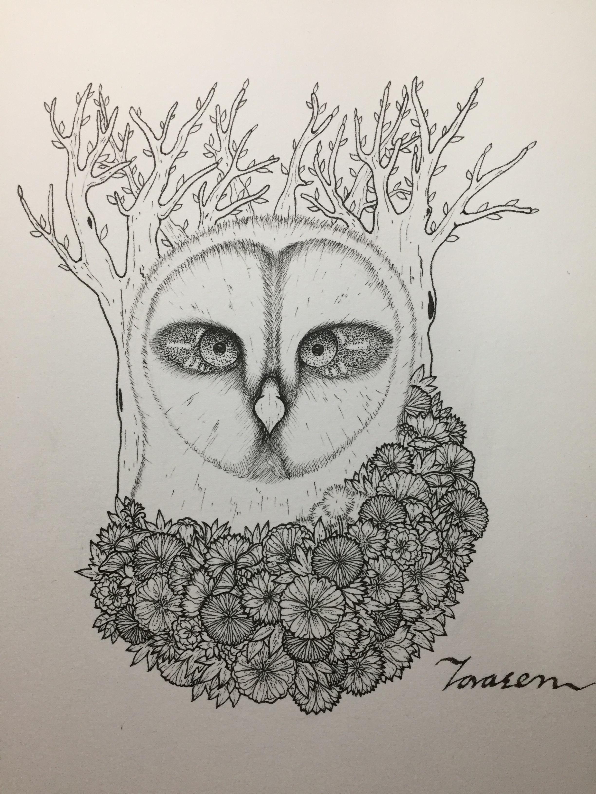 针管笔插画《猫头鹰》