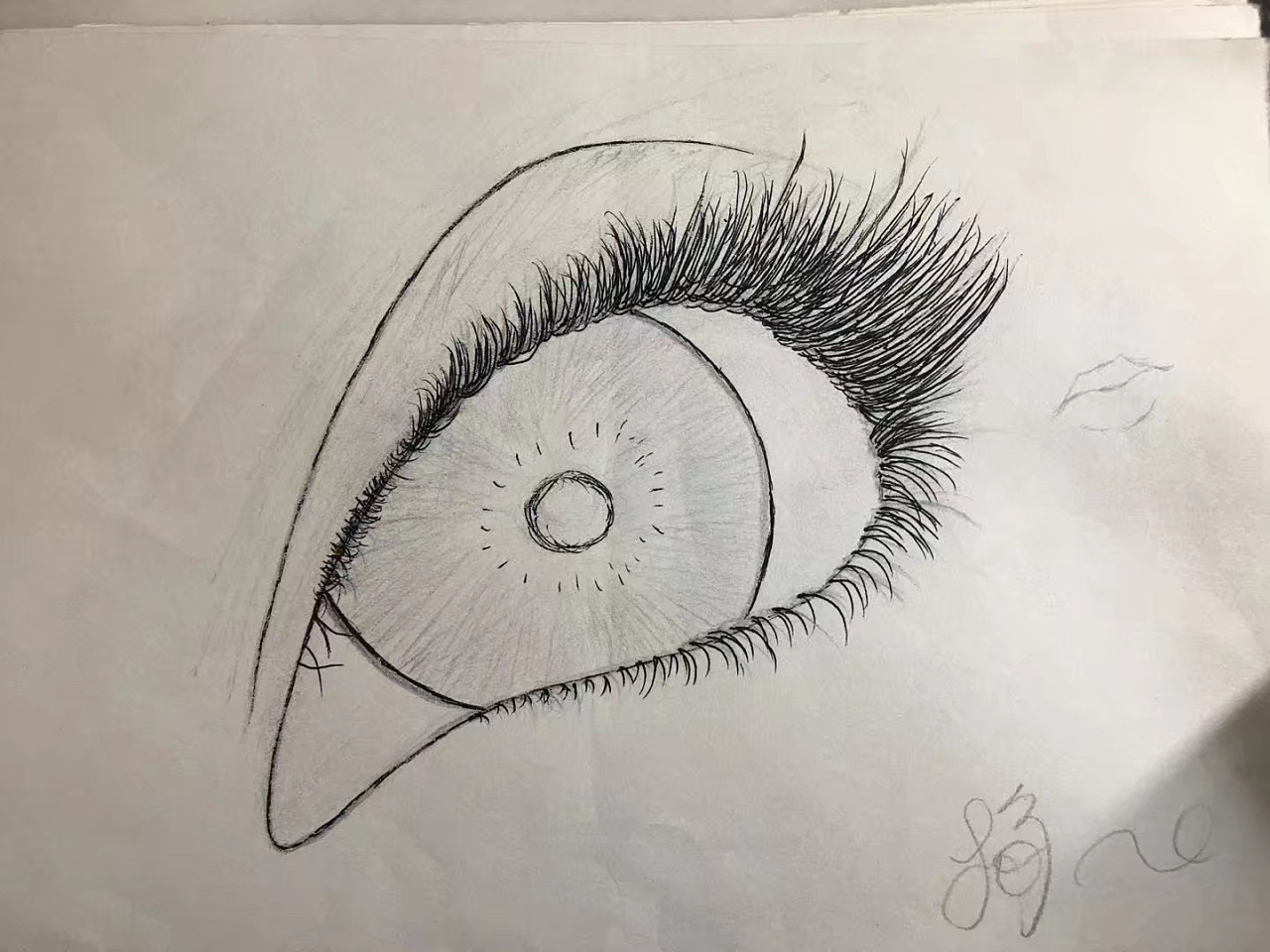 手绘|纯艺术|彩铅|a菊菊是个小太阳 - 原创作品