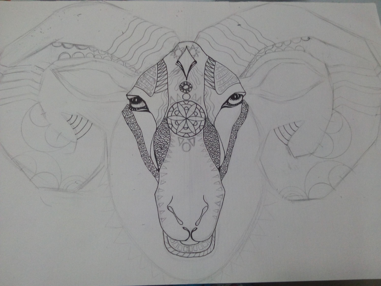 羊~黑白装饰插画图片