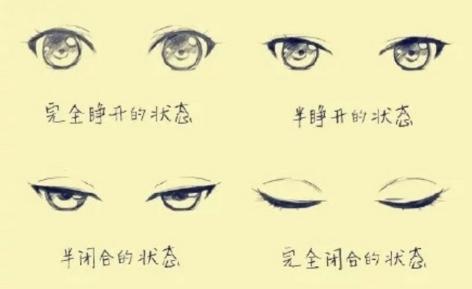 教程:【眼睛的画法】手绘不同状态下的眼睛!(翻译理论)