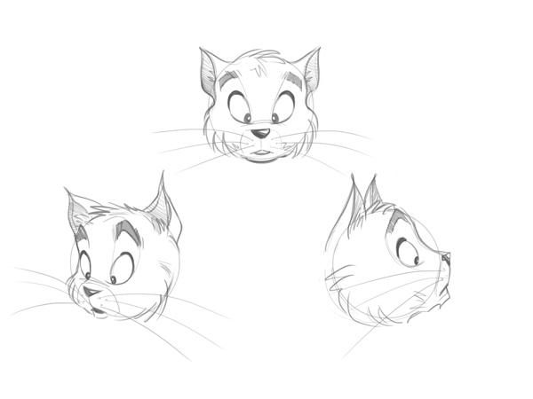 猫脸的卡通画法遵循以下规则图片