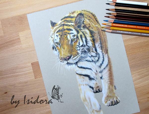 彩铅手绘人物教程