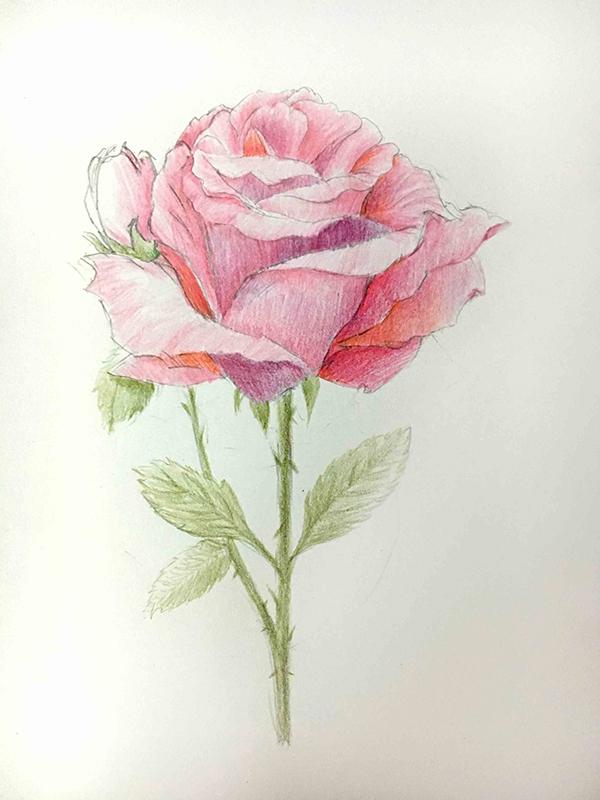 教程:听说这种手绘花和节日(七夕)更配哦