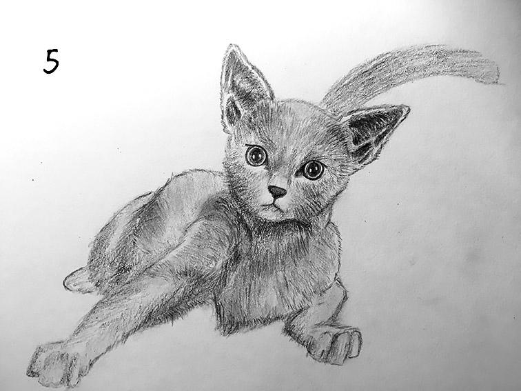 卡哇伊达猫咪就是你的啦