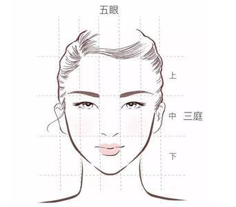 动漫绘画学习:动漫人物脸型画法及脸部结构比例