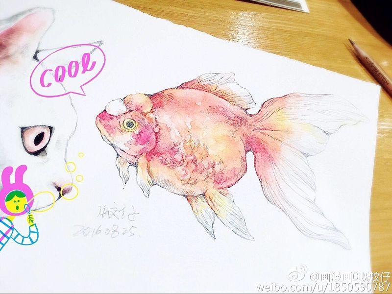 最近的一些水彩练习心得【画漫画0既蚊仔】|绘