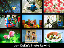 2011DuDu'sPhotoRewind