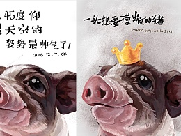 一头想要搏出位的猪
