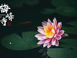 一个年轻人眼中的梅峰寺