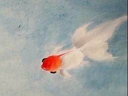 金魚系列——魚樂!