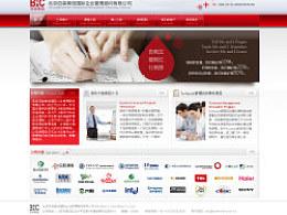 【网站设计】简洁科技风格的管理顾问公司网站