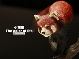 究極model studio The color of life-小熊貓