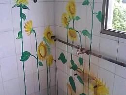 墙中的向日葵