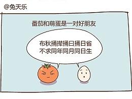 HOME<NO.13番茄和萌蛋>