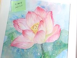 莲花——手绘