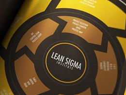 Lean Six Sigma // Information Design