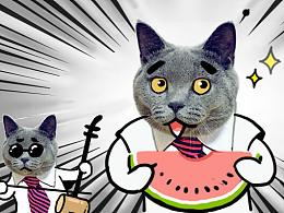 《二货总裁猫》微信表情