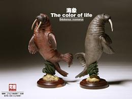 究極model studio The color of life - 海象